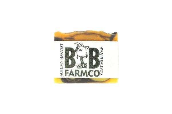 Bar of Autumn Harvest Goat Milk Soap